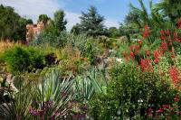 world garden Lullingstone